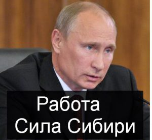 Как работается и какие вакансии Сила Сибири предлагает сам президент Путин