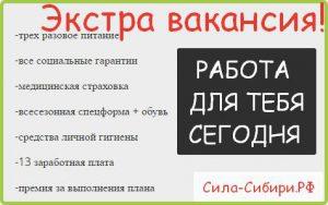 Эксклюзивные предложения по вахте до 2019 в Арктике и Сила Сибири