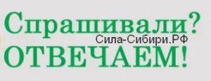 Спросите Силу Сибири, где устроится на работу