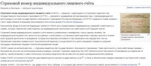 Снилс для работы в России