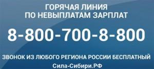 телефон горячей линии по невыплатам и задержки зарплат