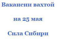 На официальном сайте Сила Сибири вакансии от проверенных фирм