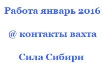 подрядчики 2016 строительства газопровода февраль сила сибири