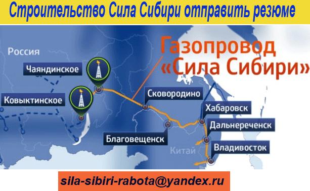 rezume_Sila_Sibiri