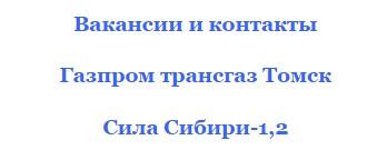 газпром трансгаз томск сила сибири-2